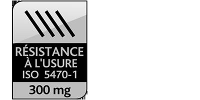 Icone Résistance à l'usure ISO 5470-1 : 300mg